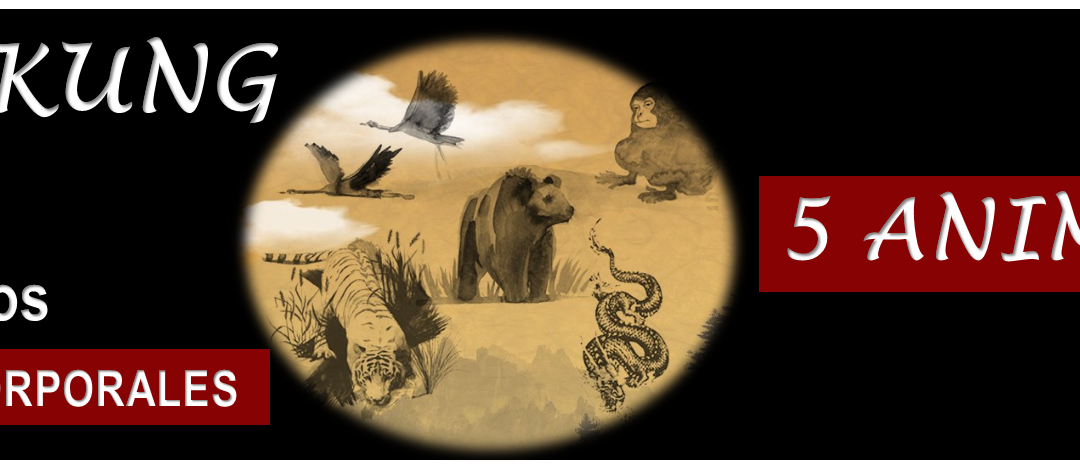 Curso_on_line_Chi_Kung_5_animales